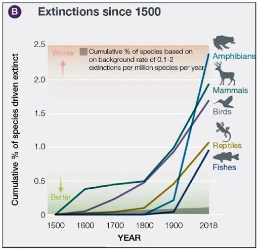 Extinctions since 1500